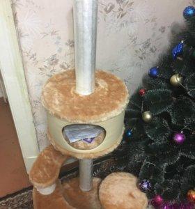 Кошачий домик