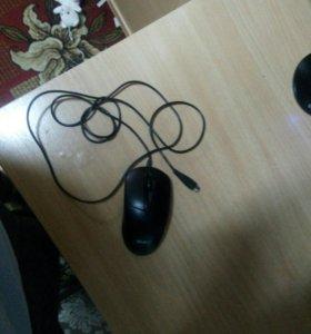 Мышь Sven