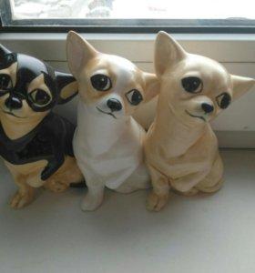 Собачки