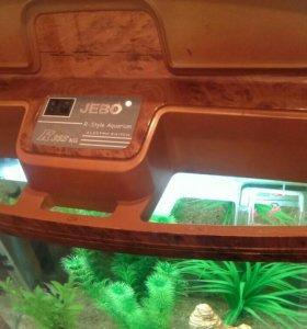 Продаю аквариум вместе со всем