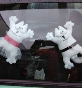 Котики на стекло авто
