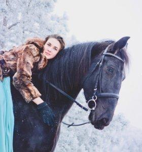 Фотограф / конный фотограф