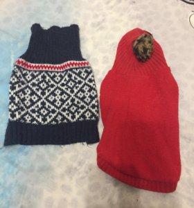 Костюм , свитер для кошек