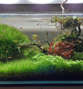 изготовление аквариумов из стекла оптивайт и М1