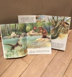 Две тонкие детские книжки в мягком переплете