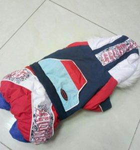 Зимний костюм на собаку