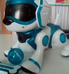 Робот-пёс Teksta