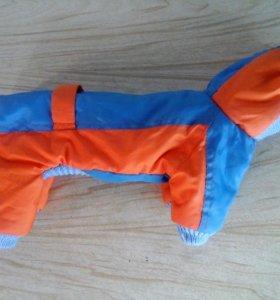 Зимний комбинезон для маленькой собачки или щенка