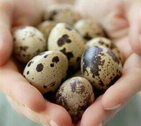 Яйца перепелинные 25 руб/10шт