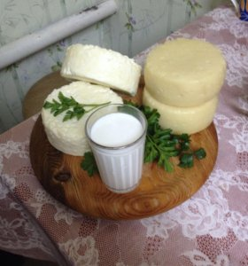 Молоко коровье очень вкусное 70₽ литр сыр