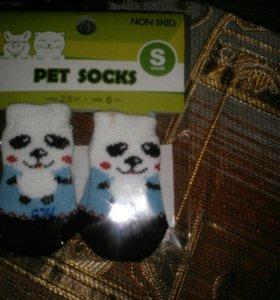 Носочки для котят