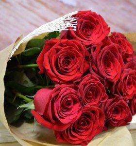 Роза экспловер🌹