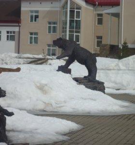 желчь медвежья