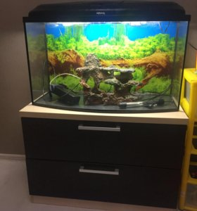 Панорамный аквариум 100 литров