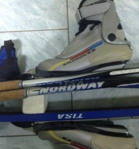Лыжи беговые в комплекте - FISCHER Tisa