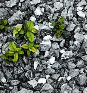 Щебень, Песок, Отсев, Земля, Вывоз грунта