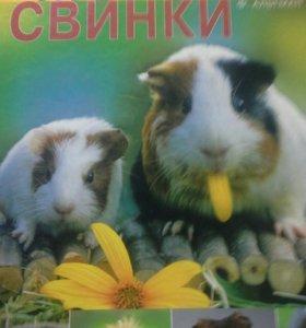 Книга про морских свинок