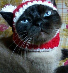 Новогодняя шапочка для маленькой собачки или кошки