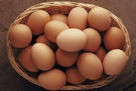 Продаются натуральные домашние куриные яйца!