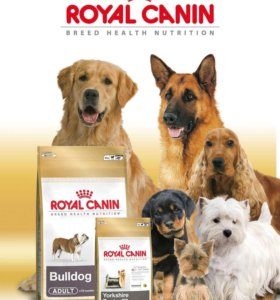 Роял канин для собак есть  все виды мешки