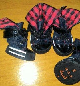 Обувь для вашего питомца. В наличии!!!!!