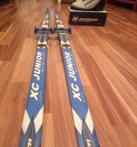 Лыжи+ботинки+палки