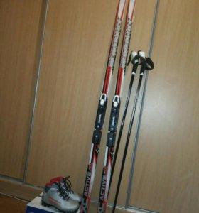 Лыжи.Весь комплект.