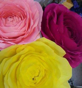 Большие ( Гигантские)цветы