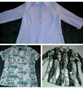 Блузки женские. 50-52