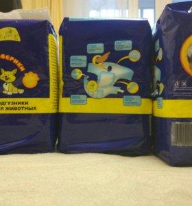 Подгузники для животных «Доброзверики» XS (2-4 кг)