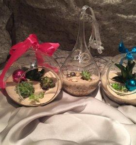 Флорариумы подвесные
