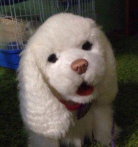 Игрушечный интерактивный щенок FurReal friends