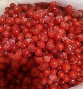 Замор.ягоды