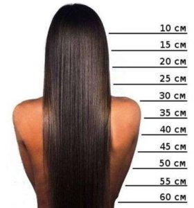 Стрижка,полировка волос.
