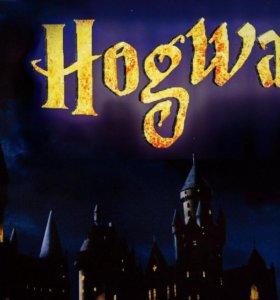ДРЦ «Hogwarts»