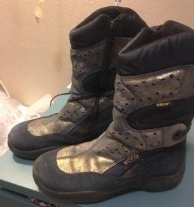 Зимние сапоги ботинки полусапоги Ecco