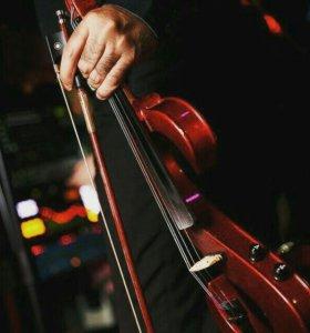 Скрипач-виртуоз,душа скрипки на любое торжество!!!