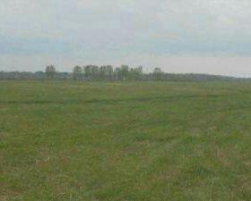 Земельные паи сельскохозяйственного назначения