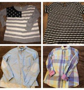 Рубашки, джемперы размер 42