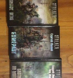 Серия книг «Stalker»