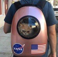 Рюкзак переноска для кошек