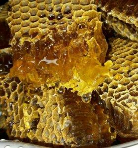 Натуральный подсолнечный мёд