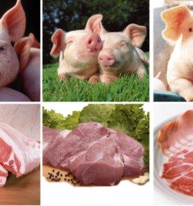Мясо кролика ,свинины