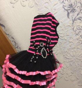 Платье на тойчика