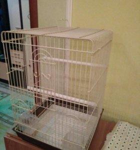 Клетка для попугая. Новая