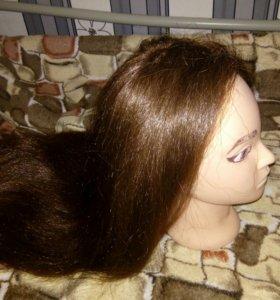 Голова с натуральными волосами , с штативом