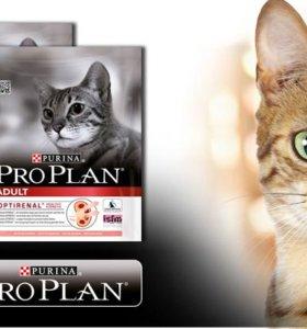 Про план  для кошек все виды мешки