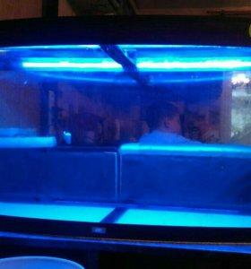 Аквариум панорамный 250 литров