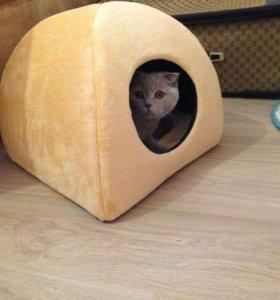 Уютный домик для кота или кошки