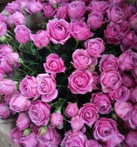 Букет Мисти Бабблз XXL кустовая пионовидная роза